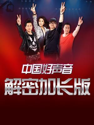 中国好声音解密加长版