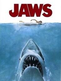 <B>大白鲨</B>