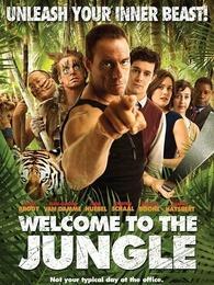 欢迎来到丛林