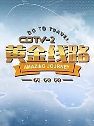 CDTV-2黄金线路